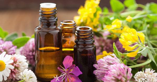 Эфирные масла для тела свойства