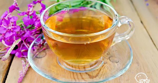 Копорский чай польза и вред