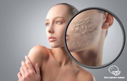Уход за сухой кожей в домашних условиях: увлажнение кожи