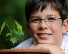 Благодаря немецкому школьнику посадили почти 13 миллиардов деревьев