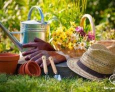 Как избежать травм в огороде