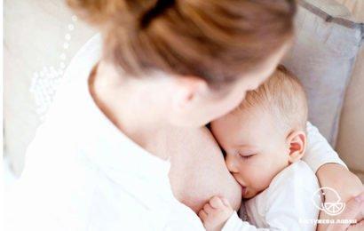 Правила грудного вскармливания новорожденных