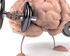 4 упражнения для ясности ума и памяти