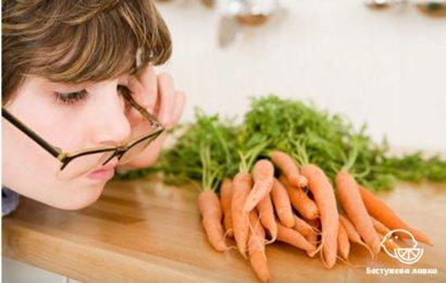 8 растительных продуктов, улучшающих зрение