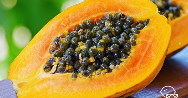 Польза и вред папайи для здоровья организма человека