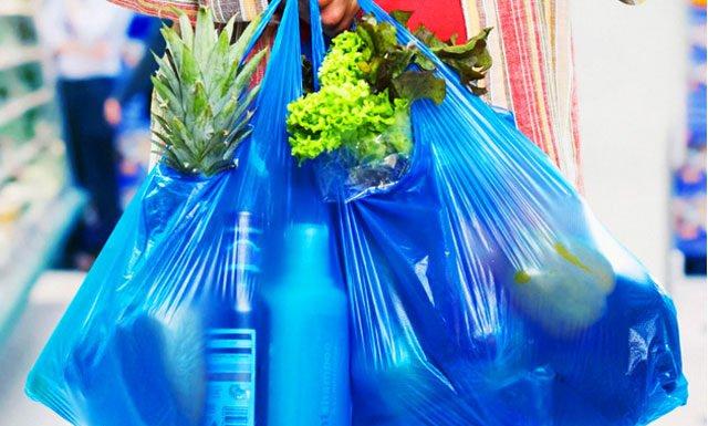 Вред полиэтиленовых пакетов для экологии. Чем заменить полиэтиленовый пакет