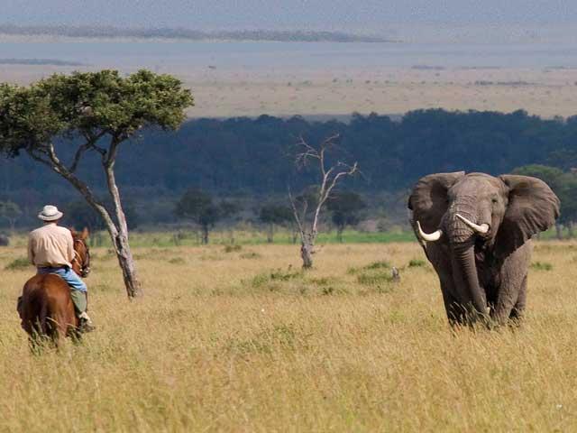 Ride Kenya Mara. Экотуризм в Кении