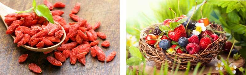 Ягоды Годжи и лесные ягоды
