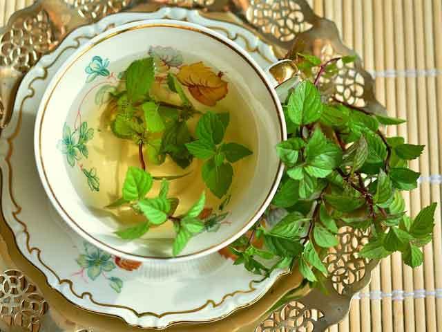 Полезные и лечебные свойства мятного чая