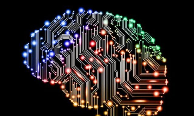 9 продуктов, которые питают нейроны головного мозга