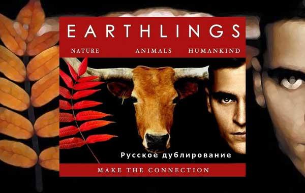 Фильм Земляне, 2005 год