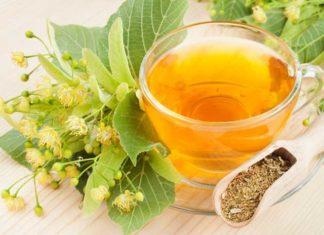 Польза чая из липы