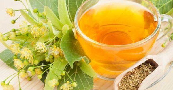 Польза и вред липового чая. Как правильно заваривать липовый чай