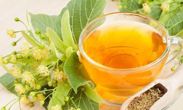 Польза и вред липового чая. Почему нельзя пить дольше 2-х недель