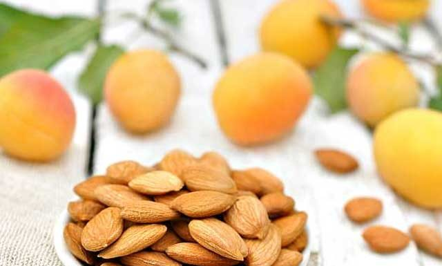 Польза и вред ядер абрикосовых косточек. Лечебные свойства
