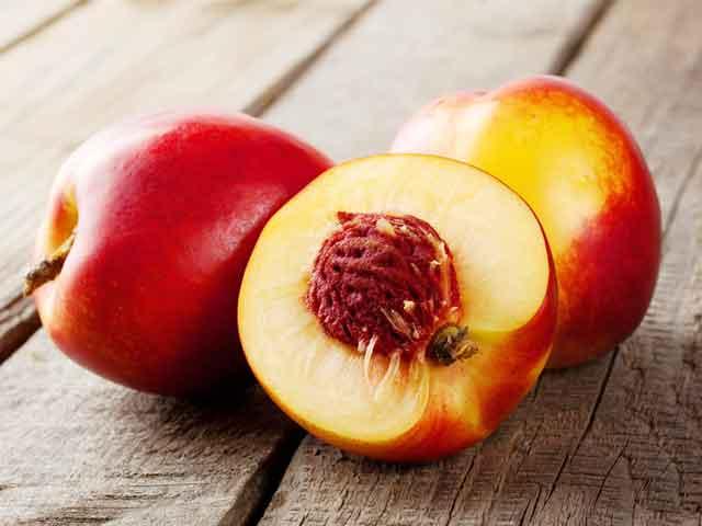 Польза и вред нектаринов для здоровья человека