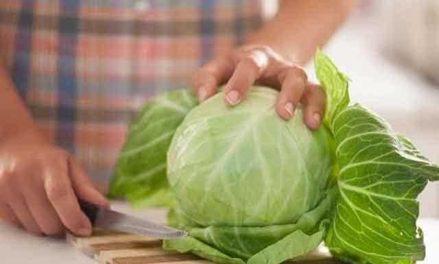 Польза и вред белокочанной капусты для человека