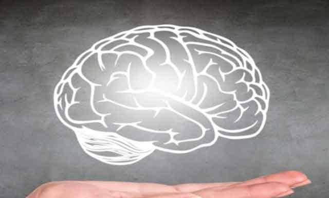 Как стресс влияет на мозг ребенка и взрослого человека?