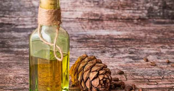 Кедровое масло польза и применение
