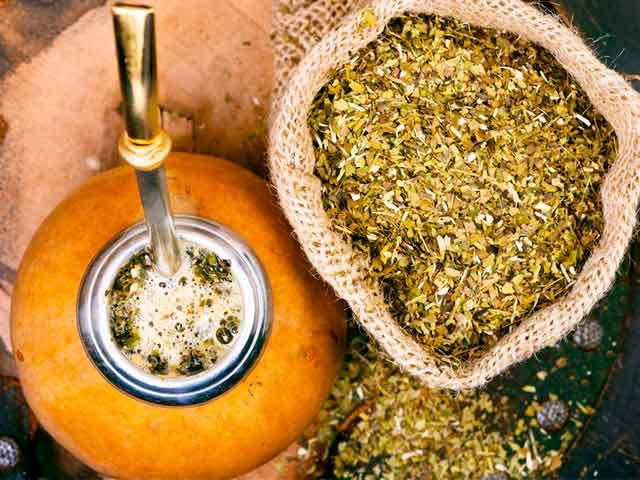 Чай мате: полезные свойства и противопоказания. Калебас и бомбилья: что это такое?