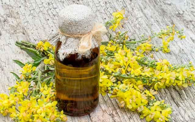 Как принимать рыжиковое масло в лечебных целях