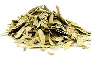 Листья сенны для похудения