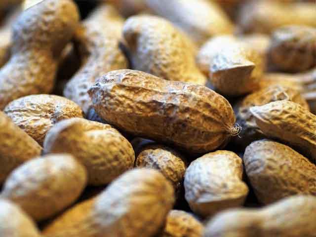 Польза и вред арахиса для мужского, женского и детского организма