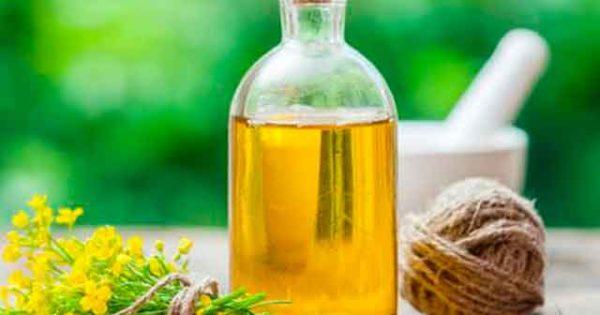 Рыжиковое масло: польза и вред для организма. Из чего делается?