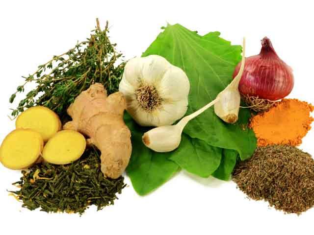 15 мощных природных антибиотиков