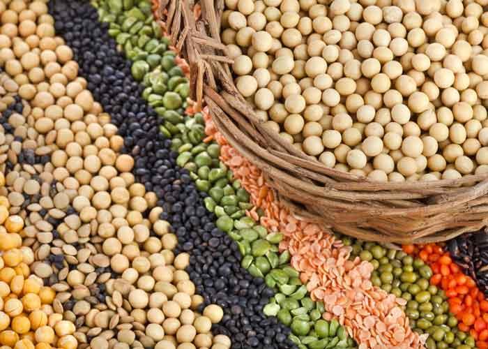 Таблица продуктов с растительным белком