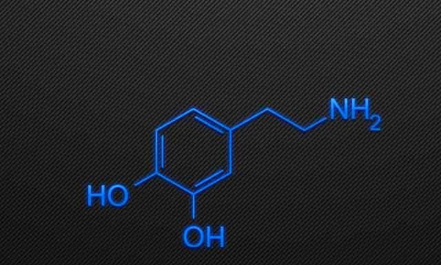 8 эффективных способов повысить уровень дофамина