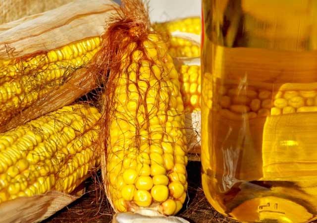 Как принимать кукурузное масло, отзывы