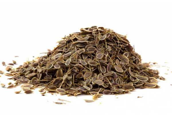 Семена укропа от шума в ушах и голове