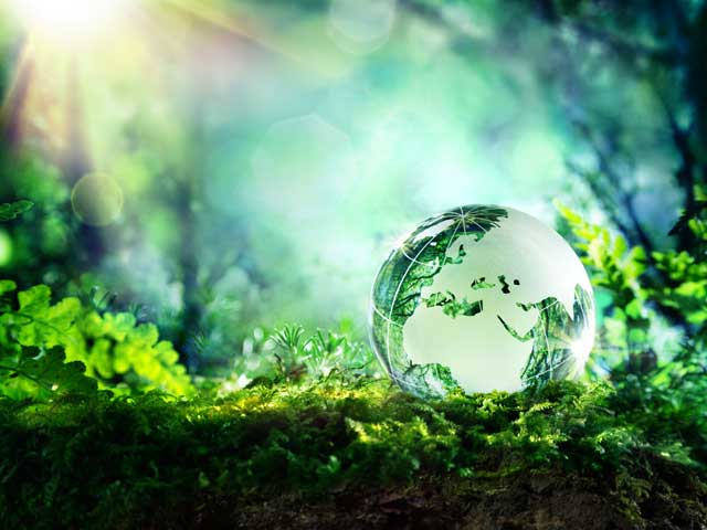 День защиты Земли 2022