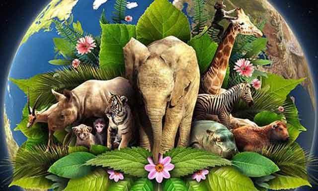 30 марта 2019 года День защиты Земли: история, факты