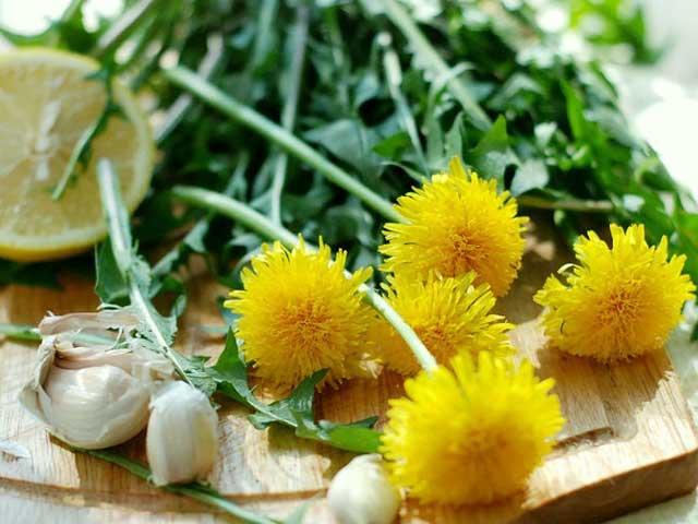 Салат из одуванчиков по-китайски: два вкусных и полезных рецепта
