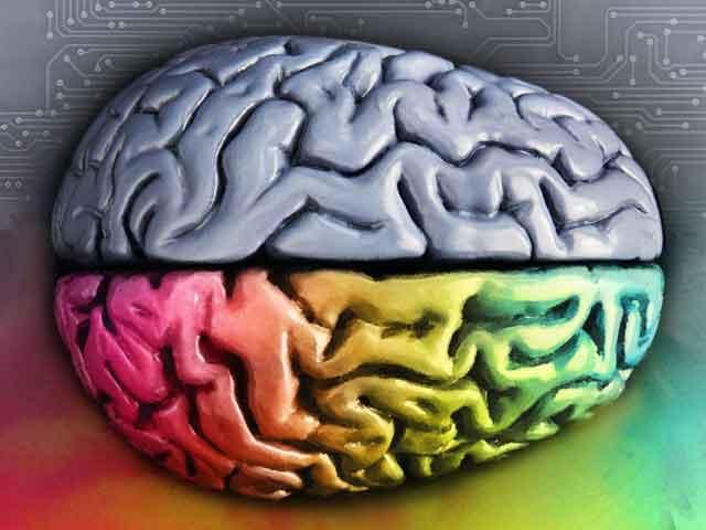 Нейробика - 8 эффективных упражнений для развития мозга