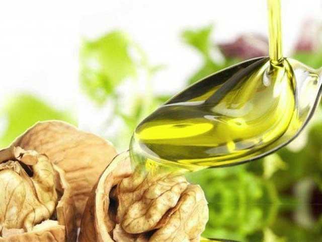 Полезные свойства и противопоказания масла грецкого ореха