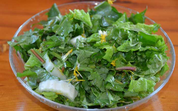 Салат из одуванчиков для похудения