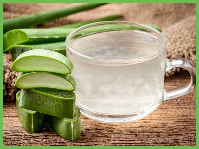 Сок алоэ: польза и вред для организма человека, применение в народной медицине