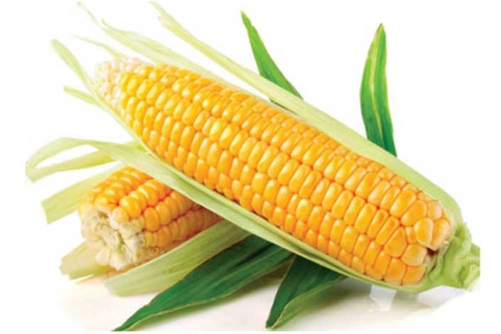 Можно ли кукурузу при грудном вскармливании
