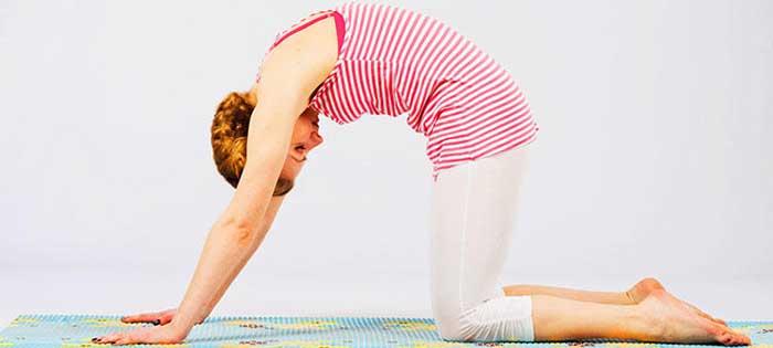 Упражнение кошечка для растяжки спины