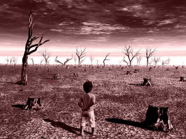 60+ интересных и серьезных фактов об экологии на планете Земля
