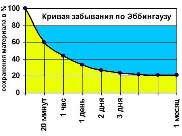 Кривая Эббингауза: методика краткосрочных и долгосрочных повторений