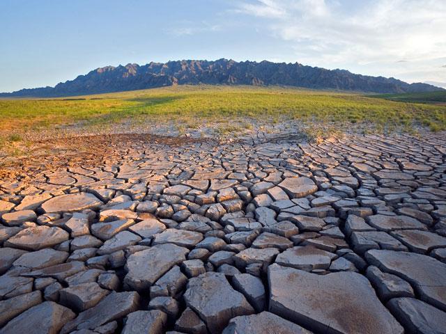 Опустынивание земель: что это такое? И как с этим бороться?