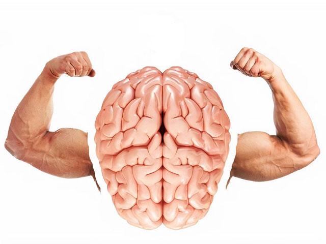 9 удивительных примеров того, как мы сами влияем на наш мозг