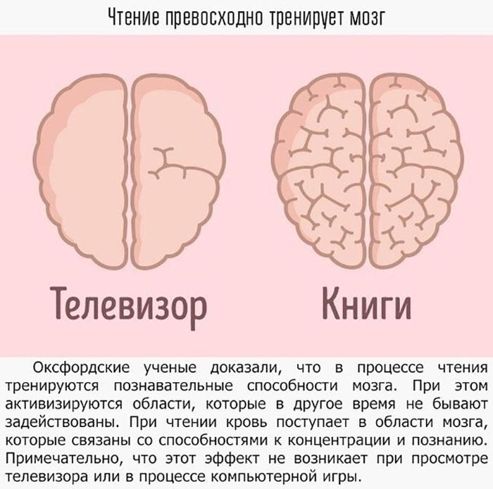 Как телевизор и книги влияют на мозг