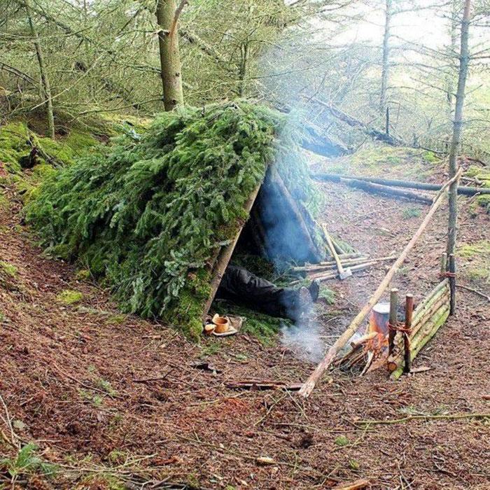 Как сделать ночлег в лесу